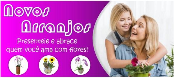 Banner Arranjo