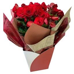 Arranjo De Flor Begônia Vermelha Presente