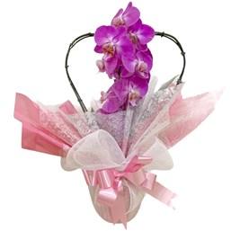 Arranjo de Orquídea Phalaenopsis Roxa - Coração 1