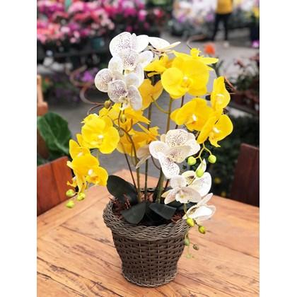 Arranjo Permanente (Artificial) Mix Orquídea Branca e Amarela