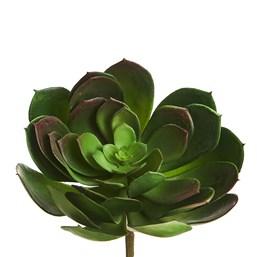 Cacto Flor de Pedra 13cm 0931 - Verde
