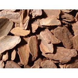 Casca De Pinus Polida Grande 1,480 Gramas