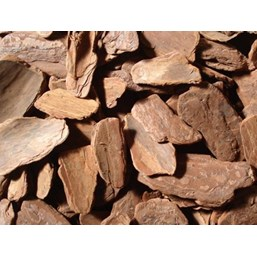 Casca De Pinus Polida Grande Premium 8KG