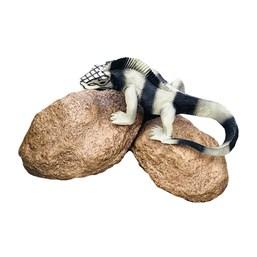 Enfeite Iguana na Pedra