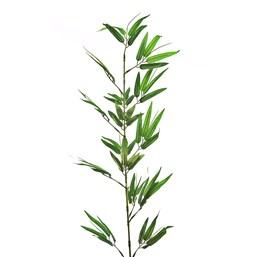 FA194249 Vareta Bambu XGG