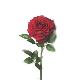 FA819917 Rosa Diamante 50cm - Cores Variadas