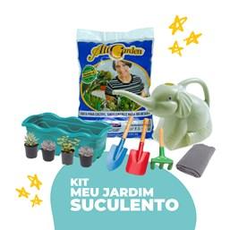 Kit Meu Jardim Suculento (LEIA A DESCRIÇÃO)