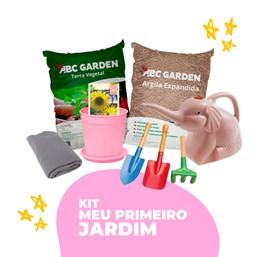 Kit Meu Primeiro Jardim (LEIA A DESCRIÇÃO)