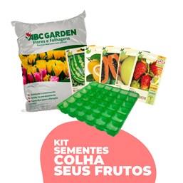 Kit Sementes Colha Seus Frutos (LEIA A DESCRIÇÃO)