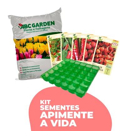 kit Sementes de Pimenta