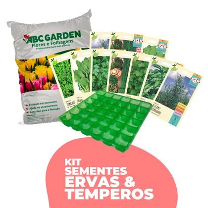 Kit Sementes Ervas e Temperos