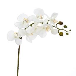 Orquídea x7 Cabeças Toque Real 67cm 74BR