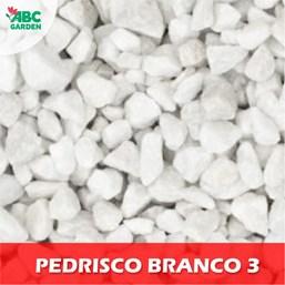 Pedrisco Branco 03