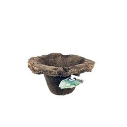 Vaso Coquim N° 14 Virola 20cm X 35cm